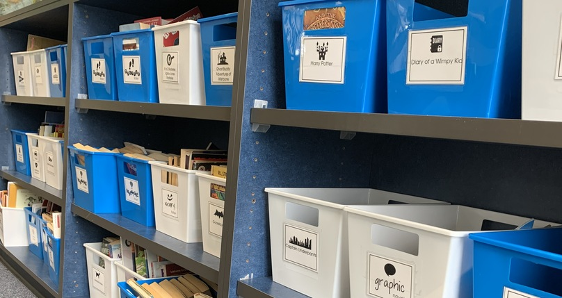 Sheldon Pines Library, book bins on shelves.